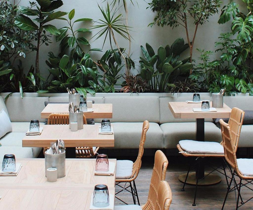 Идеи интерьера кафе в 2019 году